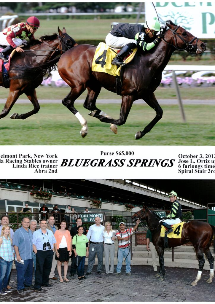 Bluegrass Springs 10 3 2013