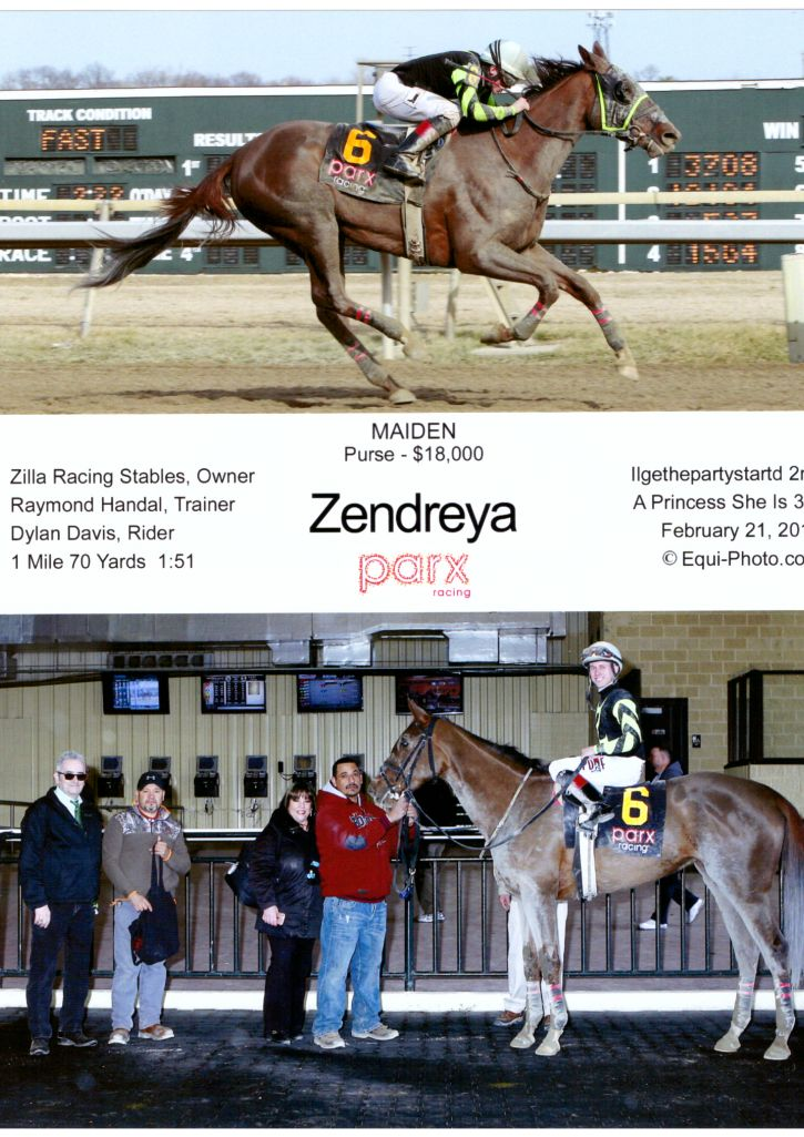 Zendreya High Res 2-21-17